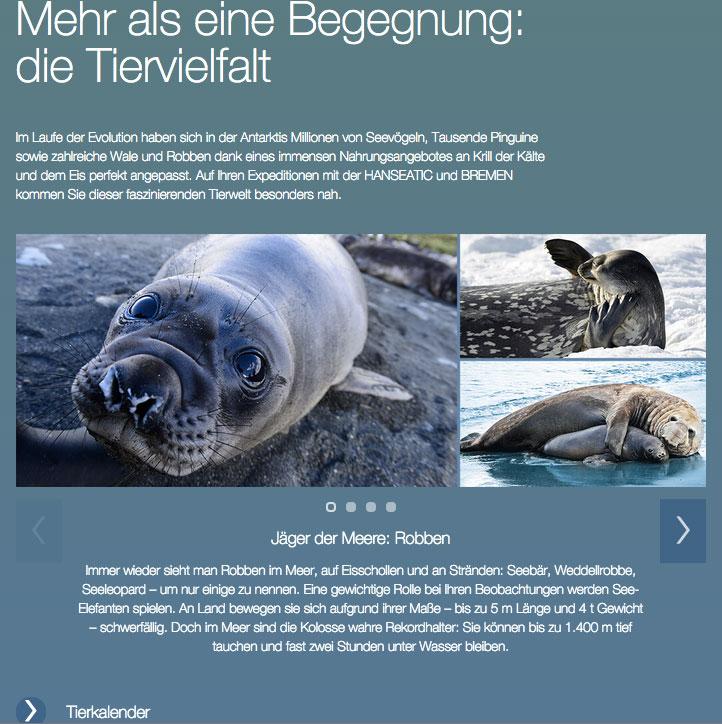 gute_texte_xovi_expertenrat_ludermann_11