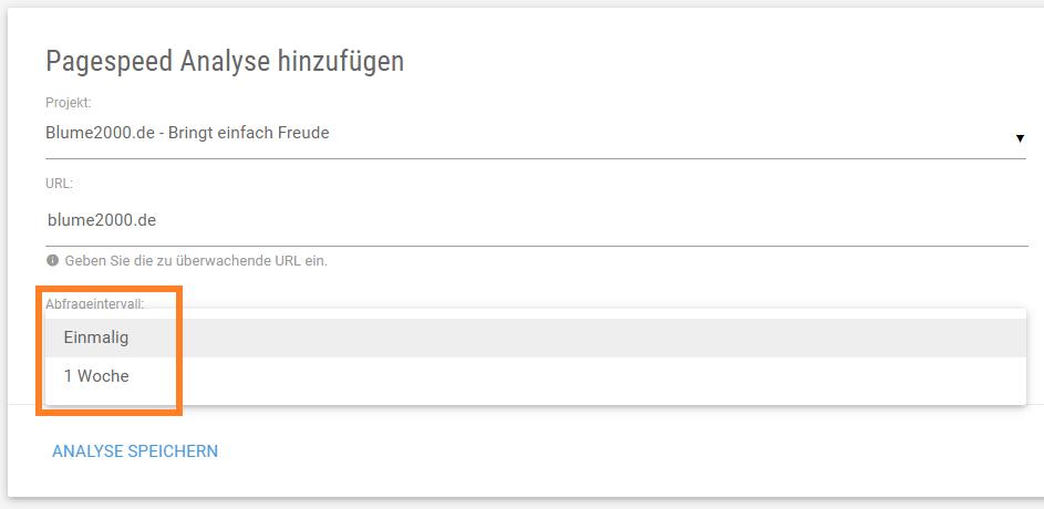 Screenshot Maske für die Pagespeed Analyse: Einmalig oder wöchentliche Analysen