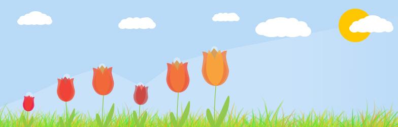 Tulpen zum Muttertag - XOVI