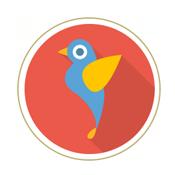 Image Google Hummingbird Update