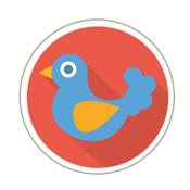 Image Google Pigeon Update