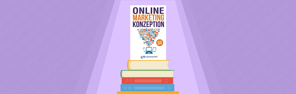 Review des Buches Online Merketing Konzeption von Dr. Erwin Lammenett