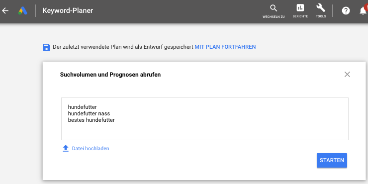 Screenshot der abzufragenden Keywords im Google Ads Keyword Planer