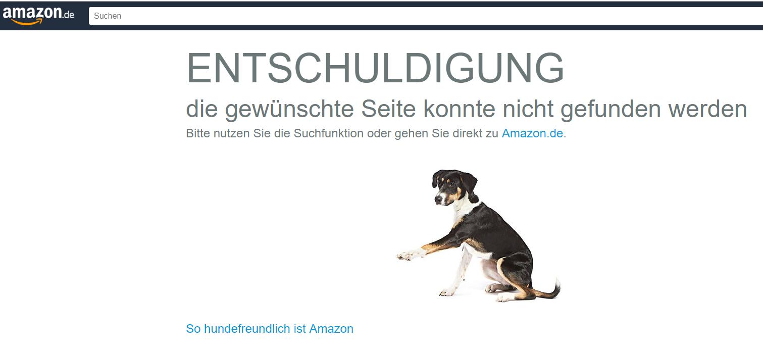 Screenshot einer 404 Seite bei amazon.de