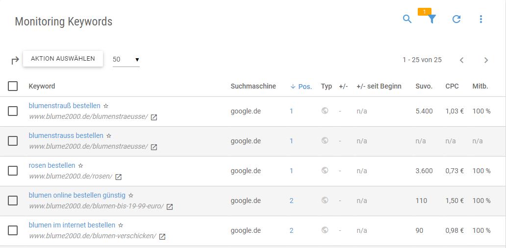 Screenshot der angelegten Keywords im Keyword-Monitoring