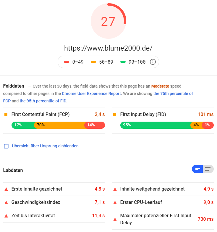 google pagespeed insights blume2000